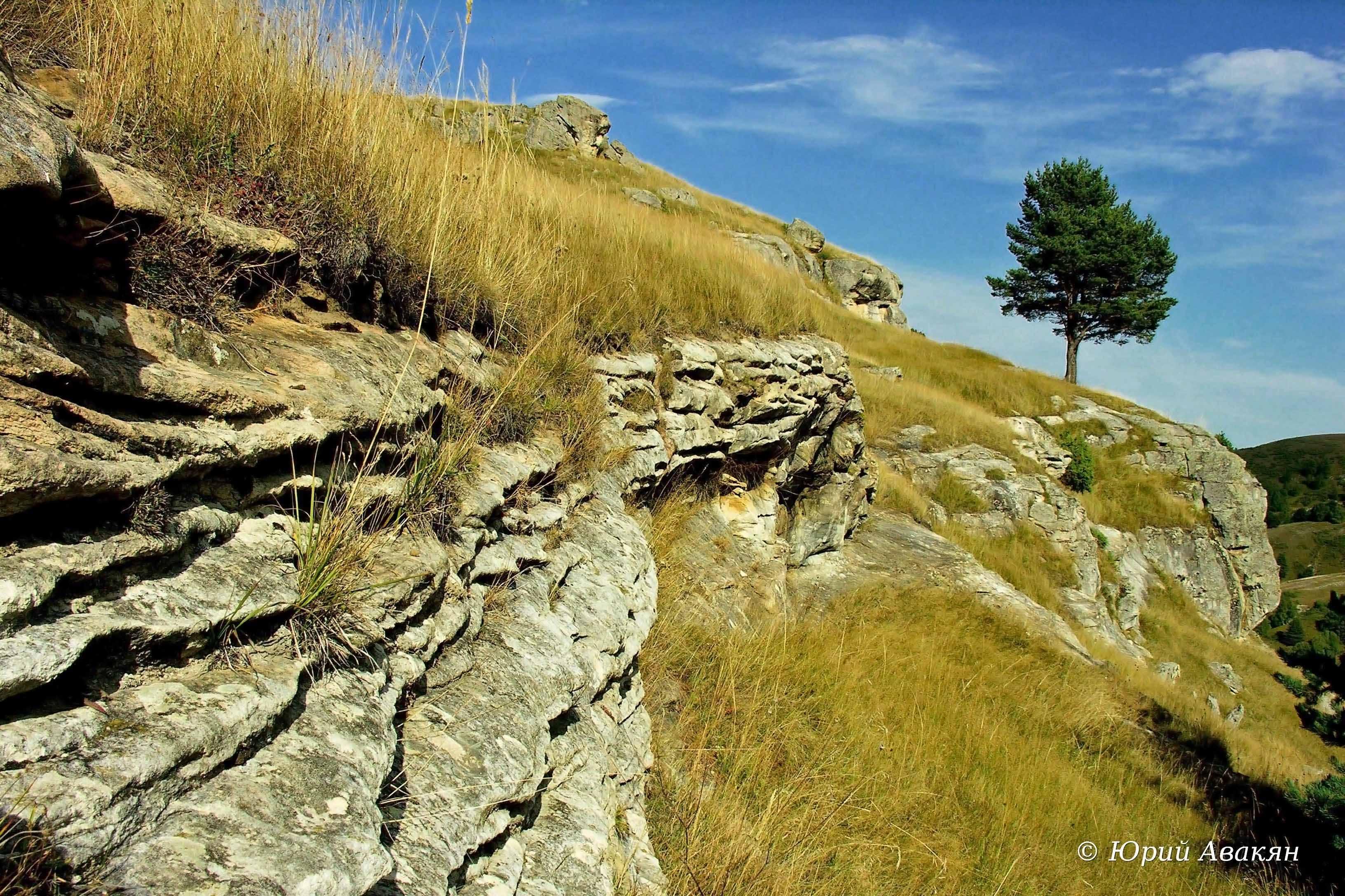Скалистый Хребет (15)
